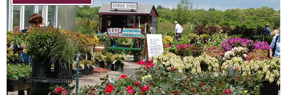 Schartner Farms Greenhouse Nursery Garden Center Farmstand Exeter Ri Farm Stand
